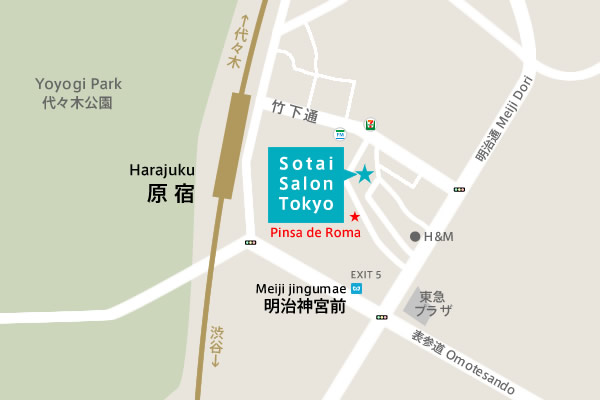map_pinsaderoma.jpg