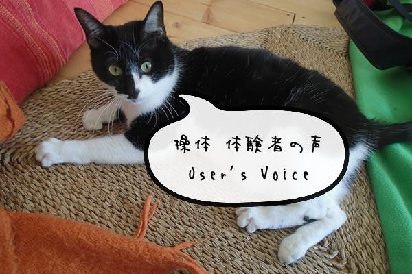 voice_001.jpg