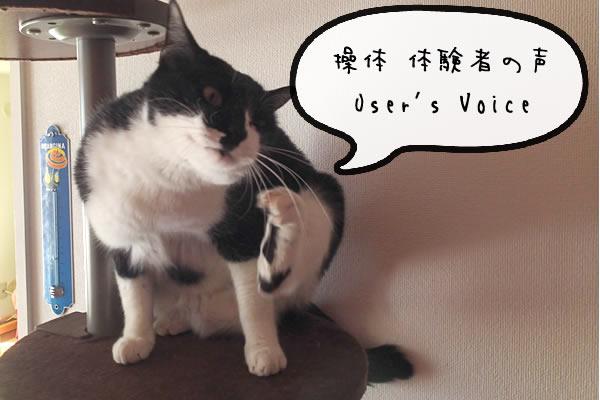 voice_002.jpg